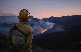Pareigūnai: gaisras Gran Kanarijos saloje sumažėjo