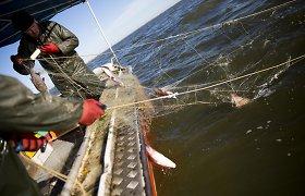 """Prieš verslinės žūklės draudimą stoję verslininkai: """"Nukentės žuvų mėgėjai"""""""