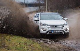 Lietuviai kaip pašėlę renkasi didesnio pravažumo automobilius: kokios priežastys tai lemia