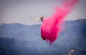 Izraelis prašo sąjungininkų pagalbos kovojant su gamtiniais gaisrais prie Jeruzalės