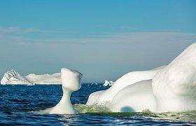 """Artėja """"Diena po rytojaus""""? Itin svarbi vandenynų srovė atsidūrė ties katastrofišku lūžio tašku"""