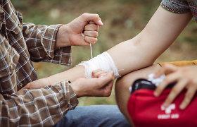 Įgėlimai, nudegimai, žarnyno infekcija: ką reikia turėti vasaros vaistinėlėje?