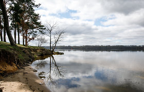 Kauno mariose užfiksuotas smulkių žuvų kritimas: deguonies kiekis – kritinis