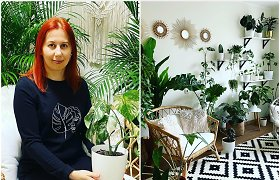 Anglų kalbos mokytojos Jurgitos namuose – augalų džiunglės: didžiausia gėlė siekia 2 metrus. Rekomendacijos pradedantiesiems