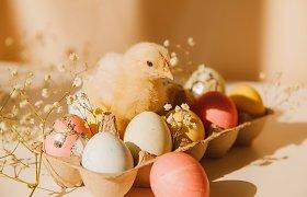 Maisto pasaulio atstovai skatina sąmoningumą: per Velykas svarbu ne tik kiaušinis, bet ir višta