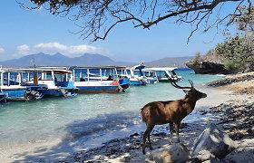 Balis kelionių vadovės akimis: tai bene vienintelė tokia vieta pasaulyje