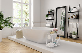 Vonios kambariui atnaujinti gali pakakti ir dienos: kaip tai padaryti?