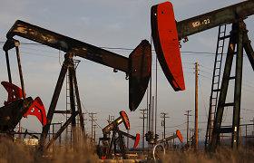 Konflikto dėl skalūnų dujų šešėlyje – JAV Kongreso narių kritika Tbilisiui už pinigus