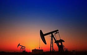 Naftos kainos pasuko žemyn