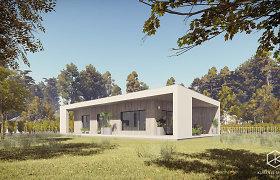 Architektai internetinėje erdvėje dalinasi nemokamu namo projektu