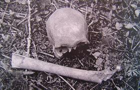 Tvarkant komposto duobę, Varėnoje rasti žmogaus kaulai