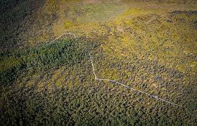 Gamtos pamokos Kamanų rezervate