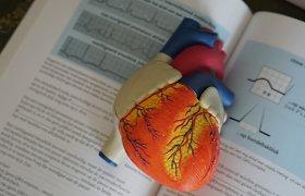 Kardiologai sunerimę: pernai koronavirusas nusinešė 2 mln. gyvybių, širdies ir kraujagyslių ligos – net 8 mln.