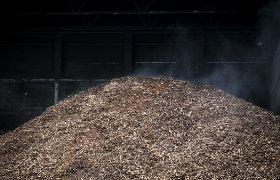 """""""Baltpool"""" padės skaitmenizuoti Ukrainos biokuro rinką"""