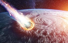 Pasaulis po asteroido, išnaikinusio dinozaurus: cunamiai, gaisrai ir jokios šviesos