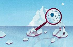 """Žurnalas """"Spectrum"""": Tirpstančiuose ledynuose įšalę virusai – ar laukia naujos pandemijos?"""