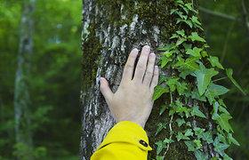 """Parama jaunuolyno sutvarkymui pasinaudojęs ūkininkas: """"Brandos sulaukia tik tinkamai prižiūrimi miškai"""""""