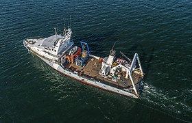 """""""Harmony Link"""" kabelio tiesimui ištirtas jūros dugnas: tarp radinių – ir laivas"""