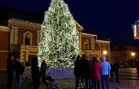 Žiemos švenčių akcentai Klaipėdoje: gyva eglė ir vėjų rožė