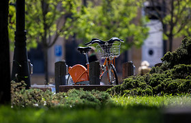 Laiptinių kronikos, arba ko vagys nežino apie mūsų dviračius?
