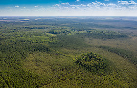 Kamanų valstybinio gamtinio rezervato vertybės