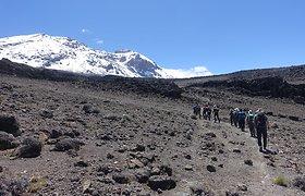 Mažvydo Puidoko kopimas į Kilimandžarą