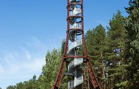 Vaizdai nuo Labanoro regioninio parko Mindūnų apžvalgos bokšto