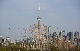 """Kanados komunikacijos bendrovė """"Rogers"""" perims varžovę """"Shaw"""" už 21 mlrd. JAV dolerių"""