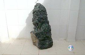 Brazilijoje rastas įspūdingo dydžio smaragdas, vertas milijonų