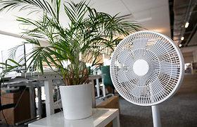 Būsto ABC. Patarimai, kaip išsirinkti ventiliatorių arba kondicionierių