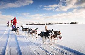Kur geriausia vykti žiemą? Pažintinės kelionės atskleis šalių paslaptis
