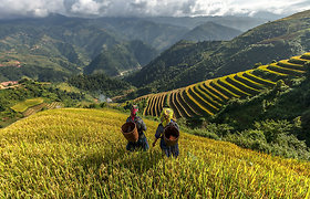 Naujoji egzotiškų atostogų Meka: ką nuveikti ir pamatyti paslaptingame Vietname?