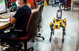 """Kodėl """"Ford"""" transmisijų gamykloje sukiojasi robotai-šunys? Jie pasirodė tikrai ne darbuotojams linksminti"""