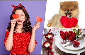 Kad meilės diena netaptų tikru košmaru: TOP 10 veiklų ir patarimų, kaip vienišiams praleisti Šv. Valentino dieną