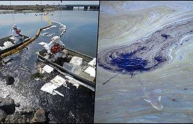 Kalifornijoje į jūrą išsiliejo apie 480 tūkst. litrų naftos – paplūdimyje jau pastebėta kritusių gyvūnų
