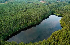 Latvija miško pramonės produkcijos eksportą šiemet padidino 20 proc., importą – 28 proc.