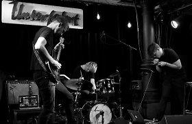 """Trio """"Sheep Got Waxed"""" – apie koncertus Vokietijoje, Azijos rinką ir kultūros politiką"""