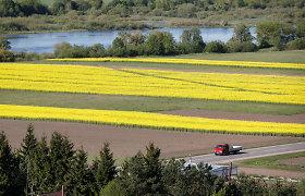 Dauguma Lietuvos europarlamentarų – už papildomas prievoles ūkininkamas