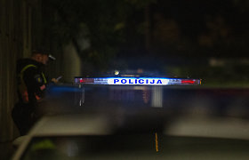 Raseinių rajone avarijoje žuvo jaunas vyras