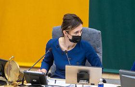 Seimo pirmininkė su komitetų vadovais rengiasi pavasario sesijai