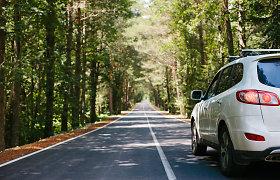 Automobilius statydami saugomose teritorijose būkite atidūs