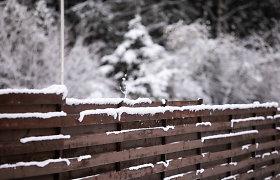Orai.lt: per Kūčias ir Kalėdas bus ir sniego, ir šlapdribos