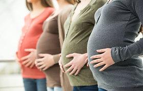 Didžiosios gandrų lenktynės – dėl mirusio pokštininko net 10 metų Toronto moterys gimdė dažniau
