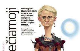"""""""Metų įvykis 2013"""": pedofilijos skandalas gęsta teismuose, o N.Venckienė ir L.Stankūnaitė slepiasi užsienyje"""