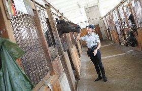 Vilniaus policija ketina atnaujinti Belmonto žirgyno pastatų kompleksą