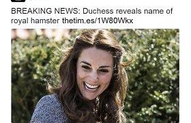 """Skaitytojai pasipiktino """"karštomis naujienomis"""": ar karališkojo žiurkėno vardas tikrai toks svarbus?"""