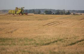 Žaliųjų partija ragina ŽŪM peržiūrėti draudimą smulkinti ir paskleisti žolę laukuose