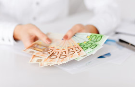 Nedidelė valstybės parama skatina dideles investicijas