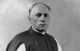 Arkivyskupo Teofiliaus Matulionio asmenybės atspindžiai istoriniuose šaltiniuose