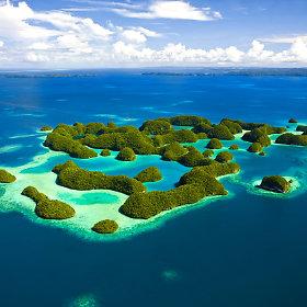 Palau salos